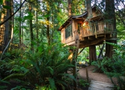 США Treehouse Point Hotel