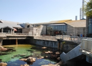 CША, «The Monterey Bay Aquarium»
